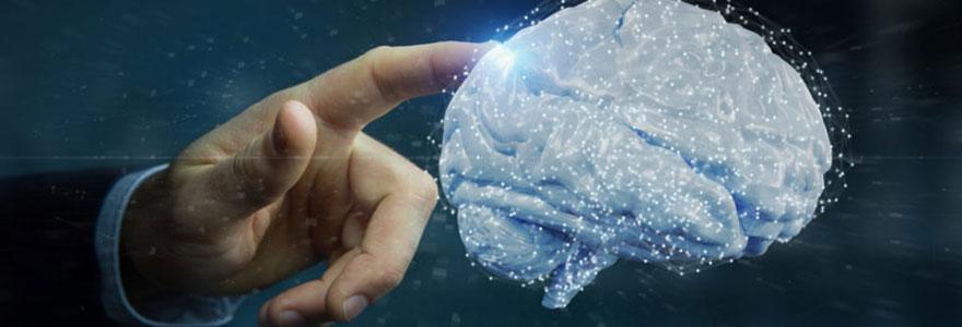 Les neurosciences et l'apprentissage